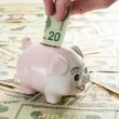 hand plaatsen 20 dollarbiljet in piggy bank — Stockfoto