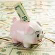 20 dollar bill in slot of piggy bank — Stock Photo