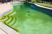 Filthy backyard swimming pool and patio — Foto de Stock
