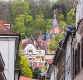 Old town of Heidelberg Germany — Stock Photo