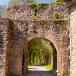 Stock Photo: Archway and gate in old castle wall