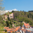 Town of Hirschhorn Hesse Germany — Stockfoto