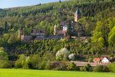 Castelo em zwingenberg na Alemanha — Fotografia Stock