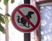 Sign in Germany prohibiting dog waste in street — Stock Photo