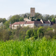 Ruine Ehrenberg in Bad Rappenau Germany — Stock Photo