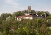 Ruine Ehrenberg in Bad Rappenau Germany — Stock Photo
