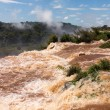 River leading to Iguassu Falls — 图库照片