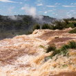 River leading to Iguassu Falls — Stock fotografie