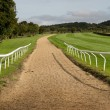 Horse riding track in Cotswold district of England — Stock fotografie