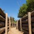 Stock Photo: Army trenches at Anzac Cove Gallipoli