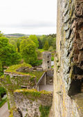 Blarney castle near Cork — Stock Photo