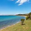 Beach and coastline at Anzac cove Gallipoli — Stock Photo
