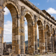 Ruins at Volubilis Morocco — Stock Photo #35442373