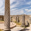 Ruins at Volubilis Morocco — Stock Photo #35442431