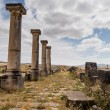 Ruins at Volubilis Morocco — Stock Photo #35442479