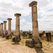 Ruins at Volubilis Morocco — Stock Photo #35442495