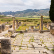 Ruins at Volubilis Morocco — Stock Photo #35442521