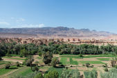 Tinghir in Morocco with green verdant valley — Stock Photo