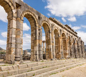 Ruins at Volubilis Morocco — Foto de Stock