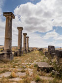 Ruins at Volubilis Morocco — Стоковое фото