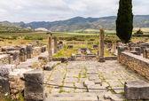 Ruins at Volubilis Morocco — Stock Photo