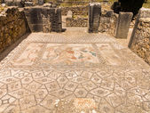 Mosaics at Volubilis Morocco — Stock Photo