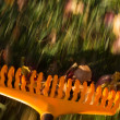 Stock Photo: Motion blur on orange lawn rake leaves
