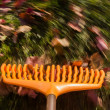 Motion blur on orange lawn rake leaves — Stock Photo