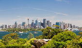 Dramatic panoramic photo Sydney harbor — Stock Photo