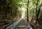 Scenic Railway to valley Katoomba Australia — Stock Photo