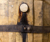 Macro shot of bung in wooden bourbon barrel — Stock Photo