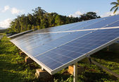 Large solar power installation in tropics — Stock Photo