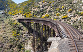 Railway bridge on Taieri Gorge New Zealand — Stock Photo