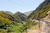 Railway track up Taieri Gorge New Zealand — Stock Photo