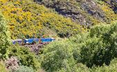 Twin diesel engines Taieri Gorge Railway — Stock Photo