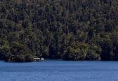 Cabana em som duvidoso na nova zelândia — Fotografia Stock