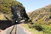 Ferrovia até dunedin gorge de nova zelândia — Fotografia Stock