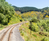 Railway track up Taieri Gorge New Zealand — Stok fotoğraf