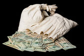 Many US dollar bills or notes with money bags — Stock Photo