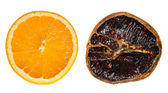 Juicy and dried orange slices side by side — Stock Photo