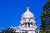 Dome of the Capitol building in Washington DC — Stock Photo