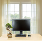 Small bonsai tree on plain office desk with monitor — Stock Photo