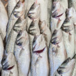 Fresh fish at fish market — Stock Photo