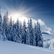 Winter — Stock Photo #29208401