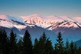 山景观 — 图库照片