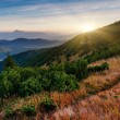 Majestic sunset in the mountains landscape. — Stock Photo #31352665