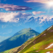 Beautiful view of alpine meadows. — Stock Photo