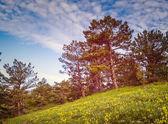 красивый солнечный день находится в горный ландшафт. — Стоковое фото