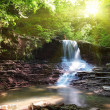 Tranquil waterfall  — Stock Photo
