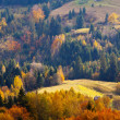 Mountain autumn landscape  — Stock Photo #31458053